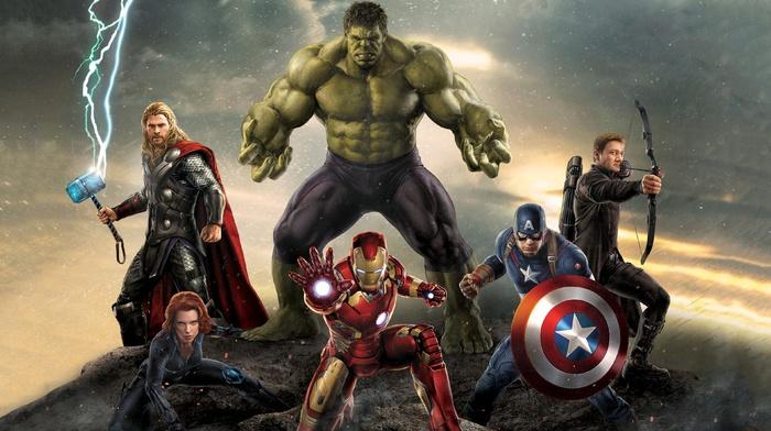 Thor, Hulk, hawkeye, Captain America, Black Widow, Iron Man