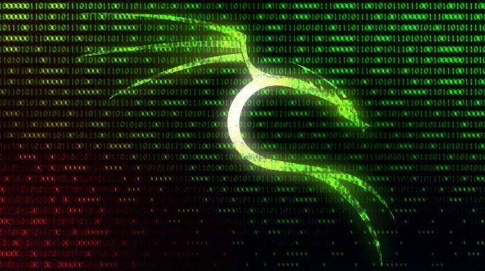 Kali Linux NetHunter, Kali Linux, Linux