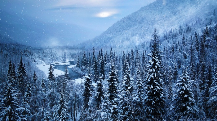 snow, river, forest, white, nature, Alaska, landscape, trees, winter, cold, mountain