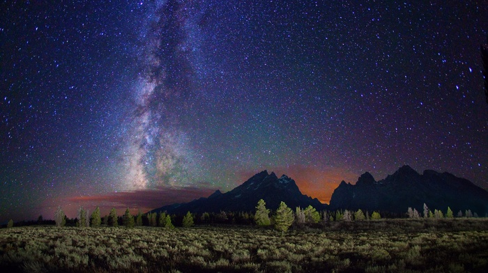 trees, landscape, starry night, night, long exposure, stars, clouds, Milky Way, galaxy, mountain