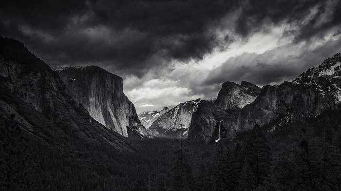 yosemite valley, mountain, El Capitan, Yosemite National Park, monochrome, landscape, nature, forest