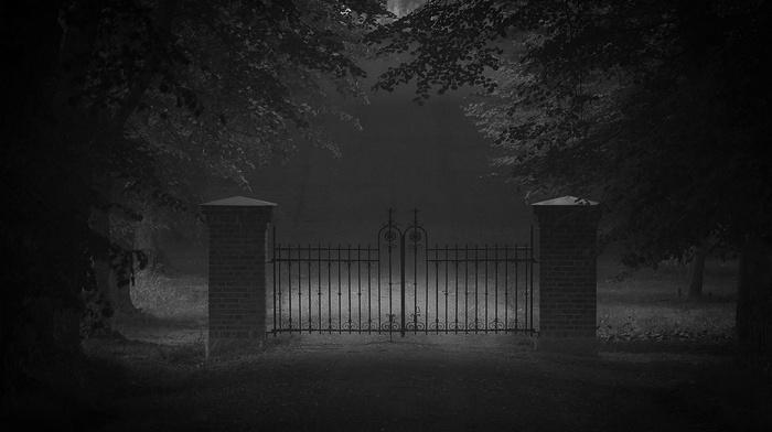 monochrome, landscape, dark, trees, door, mist, nature, gates, road, grass