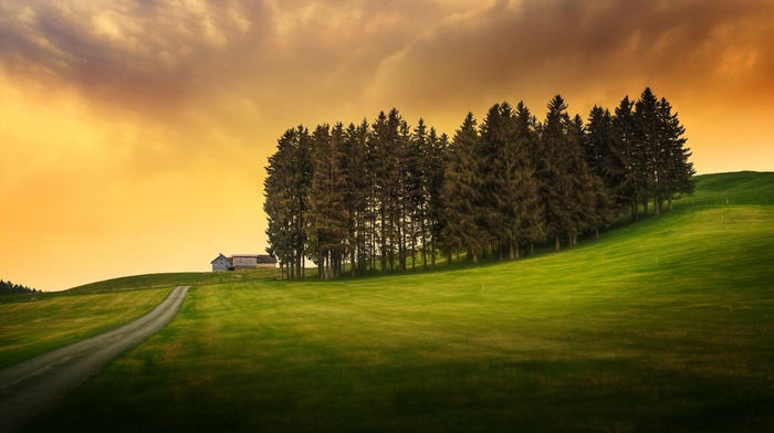 trees, grass, HDR, hill, nature, clouds, landscape, road, field, sunlight, house