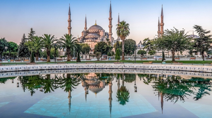 Turkey, reflection, water, palm trees, architecture, cityscape, park, Istanbul, Sultan Ahmed Mosque, tiles