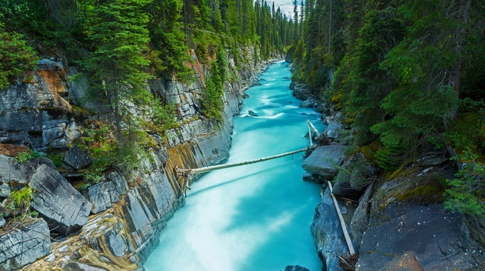 forest, trees, nature, turquoise, landscape, Canada, river, rock, green, water