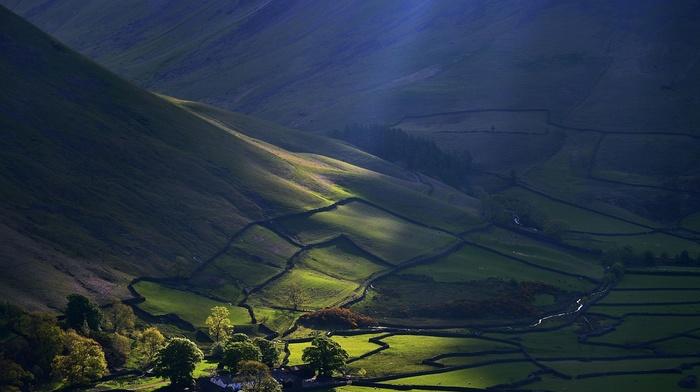nature, mountain, farm, green, sun rays, morning, creeks, trees, landscape, field