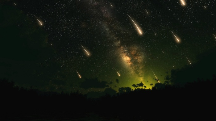forest, space, stars, night, shooting stars, digital art, star trails
