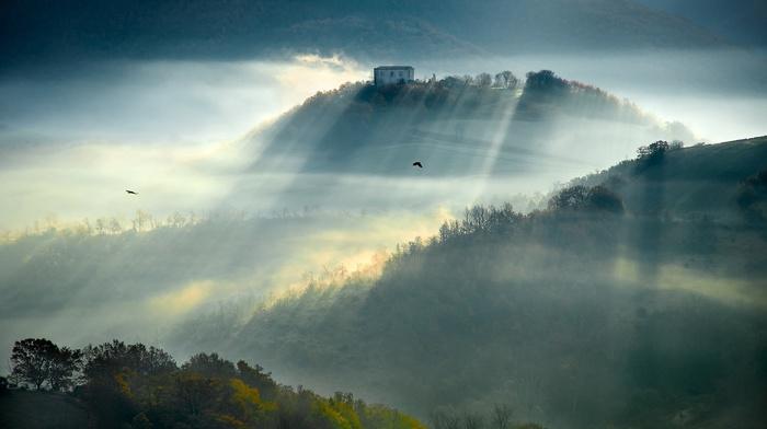 sunrise, nature, mountain, farm, sunbeams, mist, morning, landscape, forest