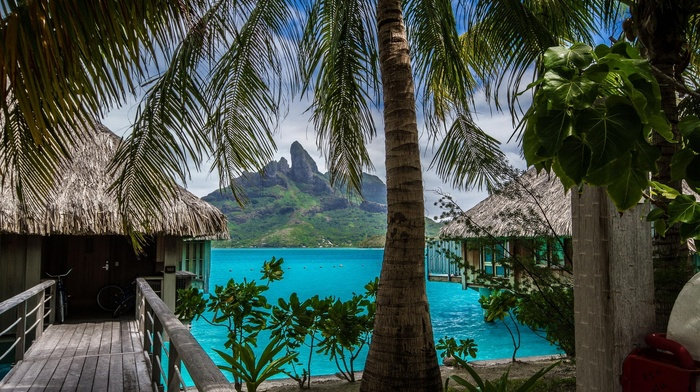 island, tropical, landscape, mountain, Bora Bora, sea, resort, beach, palm trees, nature, summer, Vacations