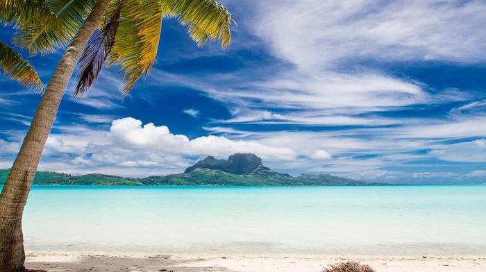 mountain, sea, Bora Bora, landscape, palm trees, beach, sand, clouds, tropical, nature, summer, island, Vacations