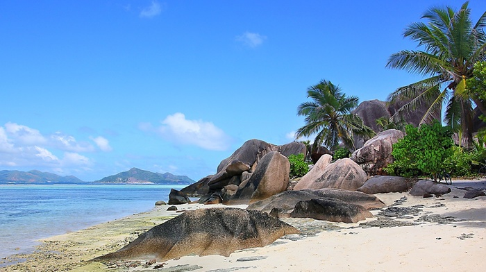island, clouds, rock, tropical, sand, summer, beach, landscape, mountain, Seychelles, sea, nature, palm trees