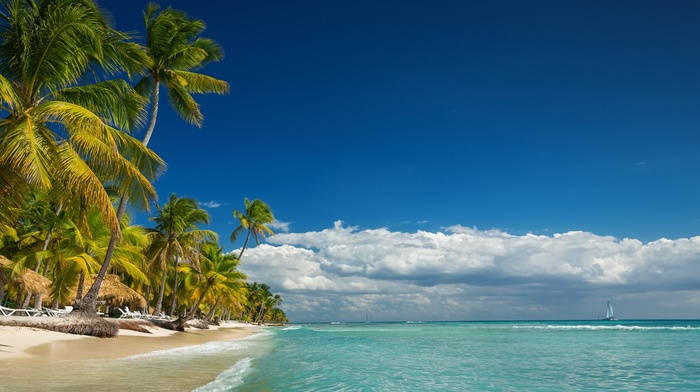 nature, island, clouds, beach, summer, palm trees, tropical, sea, Vacations, landscape