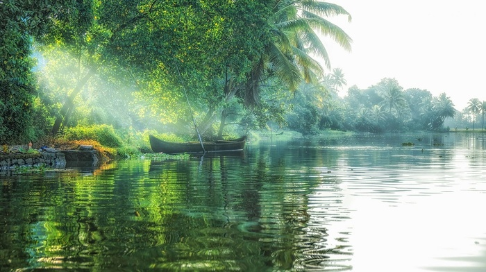 tropical, sun rays, boat, lake, landscape, nature, water, mist, palm trees, green, trees