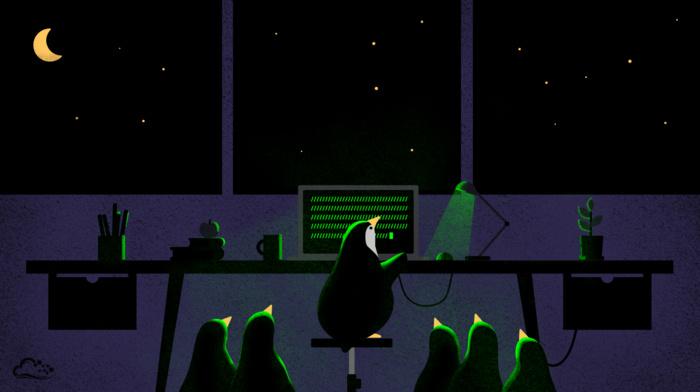 digitalocean, penguins, computer, night