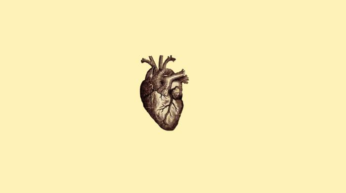veins, simple background, digital art, hearts, minimalism, medicine, drawing, simple, anatomy