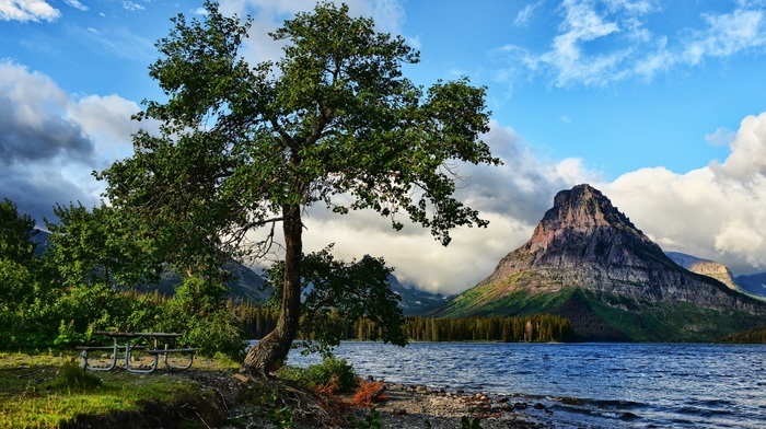 forest, lake, hill, nature, Glacier National Park, mountain, bench, Montana, clouds, trees, landscape, water, USA