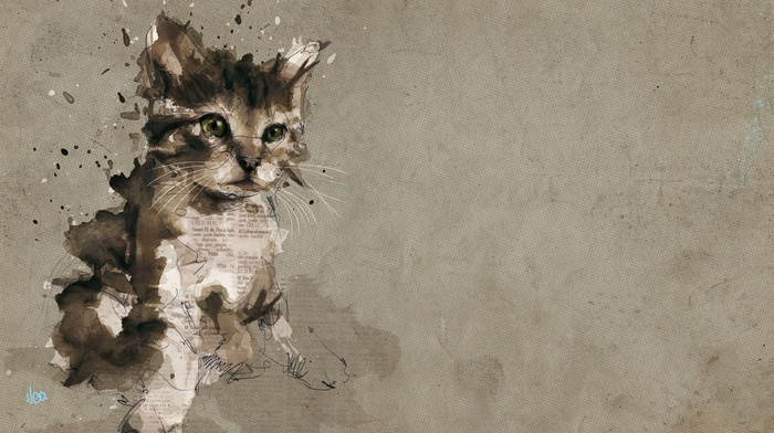 paper, cat, paint splatter, painting, animals, baby animals, text, digital art, pet, kittens