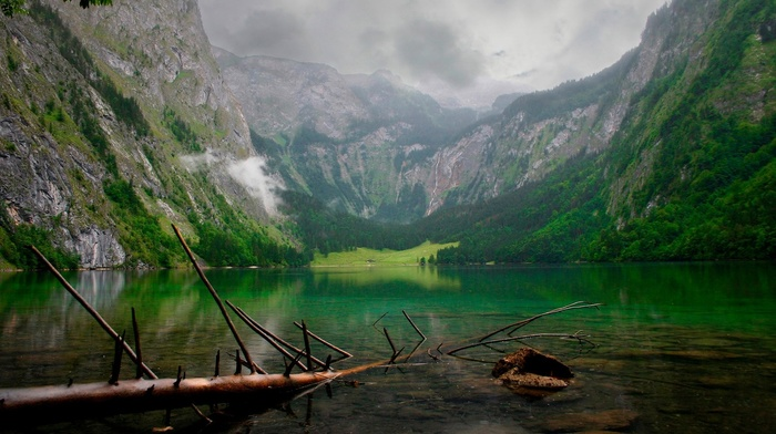 clouds, nature, branch, mountain, green, water, forest, summer, landscape, lake, Alps