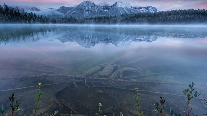 reflection, banff national park, mountain, sunset, nature, lake, sky, forest, Canada, blue, landscape, mist, water, shrubs, snow