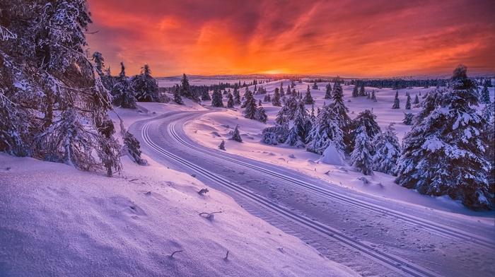 cold, sunrise, sky, nature, snow, forest, trees, landscape, Norway, orange, road, white, winter