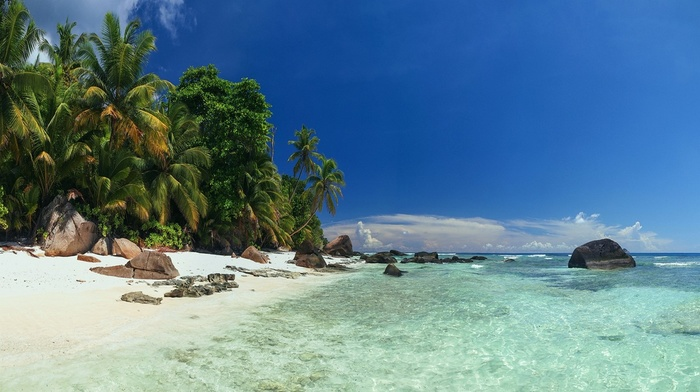 Vacations, sea, sand, water, nature, landscape, palm trees, Seychelles, beach, rock, summer, island, tropical, clouds