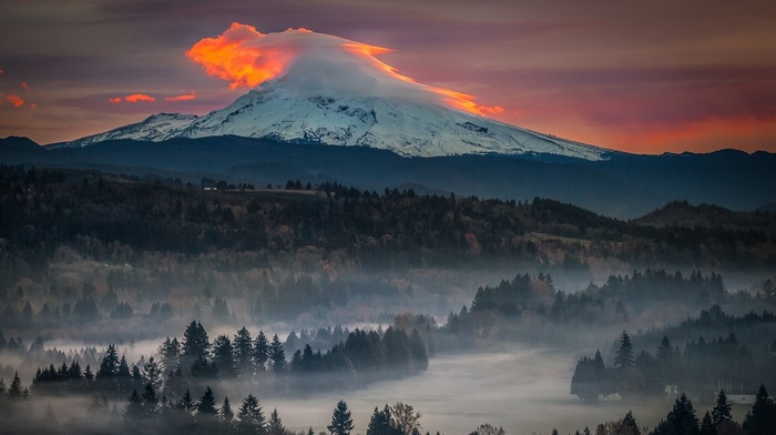 volcano, sunset, sky, trees, Oregon, mist, forest, nature, snowy peak, landscape, mountain