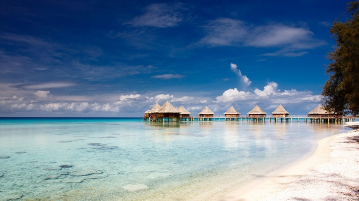bungalow, resort, tropical, sea, sand, nature, clouds, island, sky, beach, summer, trees, landscape, atolls, French Polynesia, Vacations