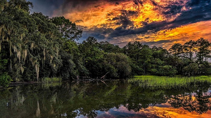 South Carolina, summer, nature, forest, sunset, clouds, foliage, reeds, HDR, reflection, sky, trees, landscape, water, river