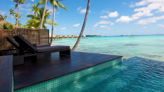 palm trees, sea, summer, water, swimming pool, bungalow, tropical, landscape, resort, nature, atolls, beach