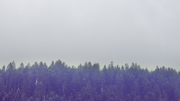 landscape, sky, Europe, Italy, muted, mountain, trees, nature