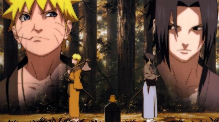 Uchiha Sasuke, Uzumaki Naruto, Naruto Shippuuden