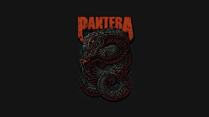thrash metal, Pantera, music, heavy metal, snake