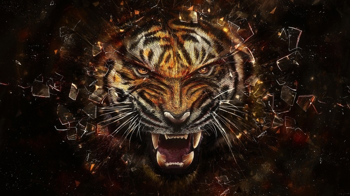 tiger, teeth, digital art, broken glass, face, glass, animals, shards, artwork