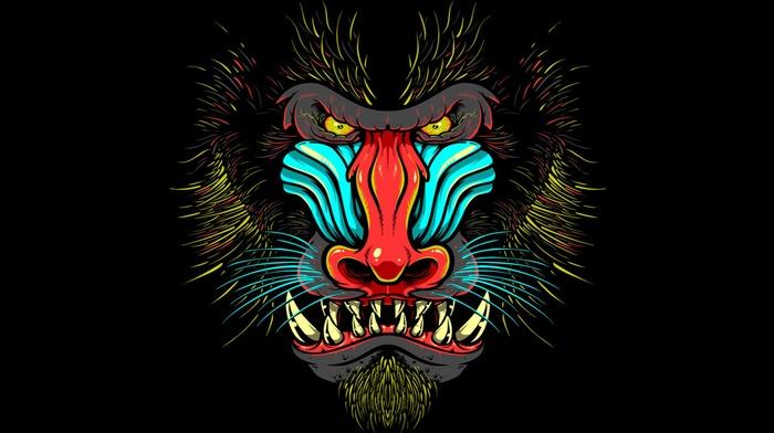 Mandrill, animals, yellow eyes, black background, muzzles, drawing, fangs, monkeys, digital art, hairy, colorful