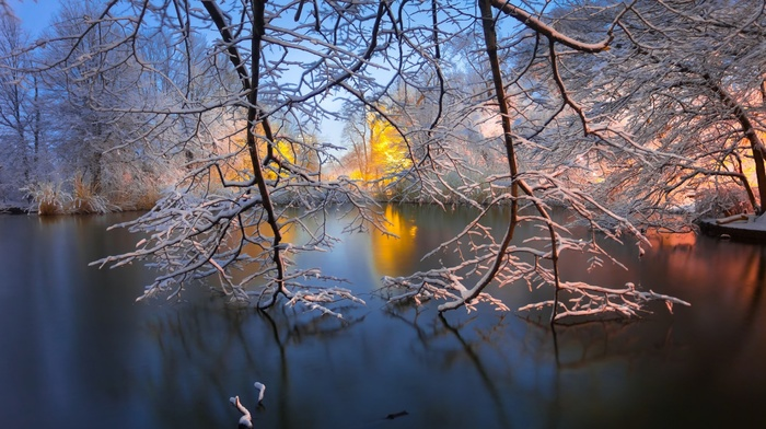 snow, branch, trees, water, New York City, park, winter, sunrise, landscape, USA, long exposure, morning, Brooklyn, nature, reflection, lake
