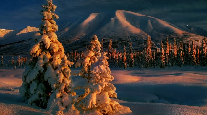 sunrise, nature, winter, mountain, forest, trees, cold, landscape, clouds, snow