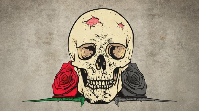 rose, thorns, digital art, drawing, skull, teeth, flowers, simple background