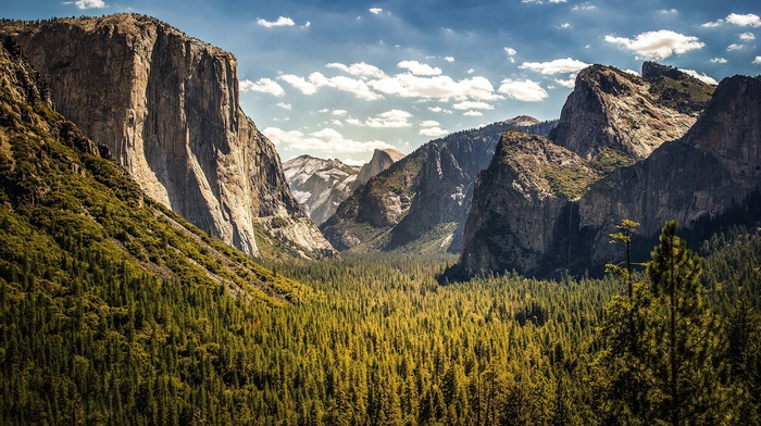 cliff, nature, trees, landscape, forest, valley, national park, wyoming, clouds, Yosemite National Park, USA, sky, mountain