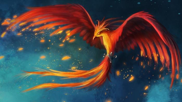 fantasy art, burning, phoenix, wings, flying, birds, fire, tail, digital art