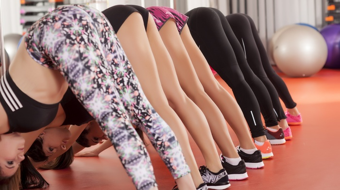 long hair, yoga pants, dark hair, exercising, group of girl, stretching, ass, short shorts, tights, brunette, L, blonde, sporty, shorts, Japanese girl, model, ball, sneakers, lying on front, girl, tight clothing, sports bra, yoga