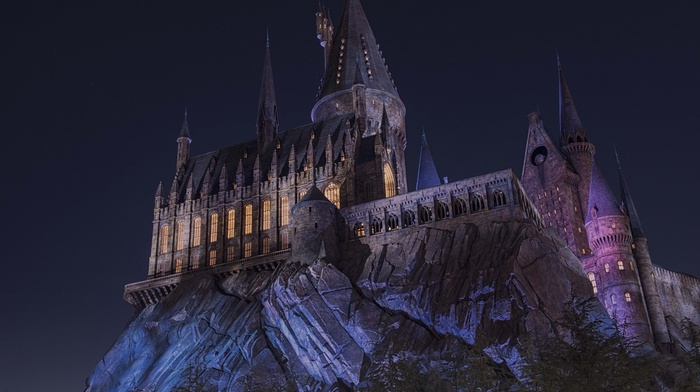 lights, trees, dark, magic, castle, Hogwarts, night, landscape