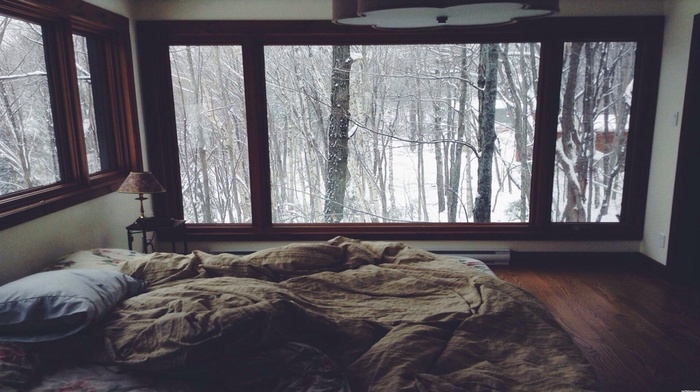winter, window, pillows, room, forest