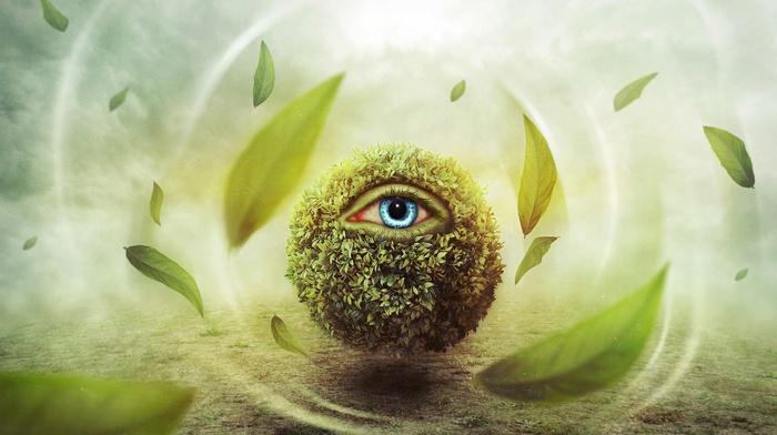 digital art, blue eyes, surreal, eyes, windy, grass, field, leaves, nature, fantasy art, clouds