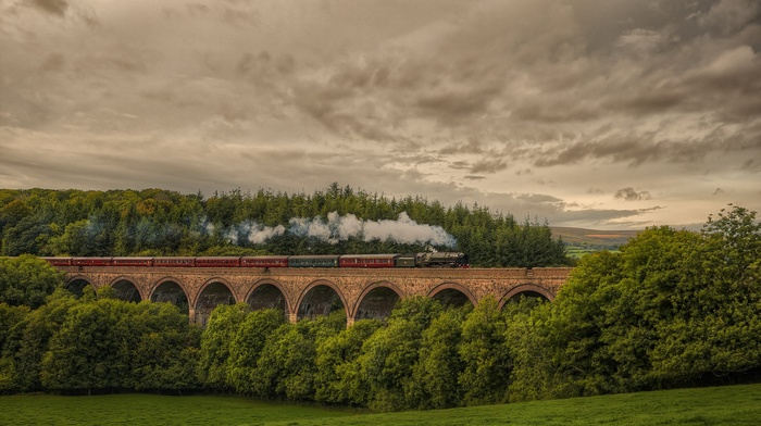 viaduct, UK, smoke, nature, train, England, field, forest, clouds, landscape, HDR, steam locomotive, hill, trees, sky, railway, bridge, grass