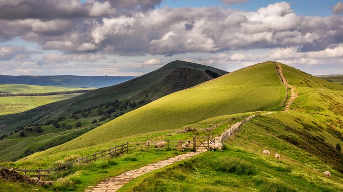 grass, trees, clouds, animals, UK, landscape, England, sky, field, stones, nature, path, forest, fence, hill, sheep