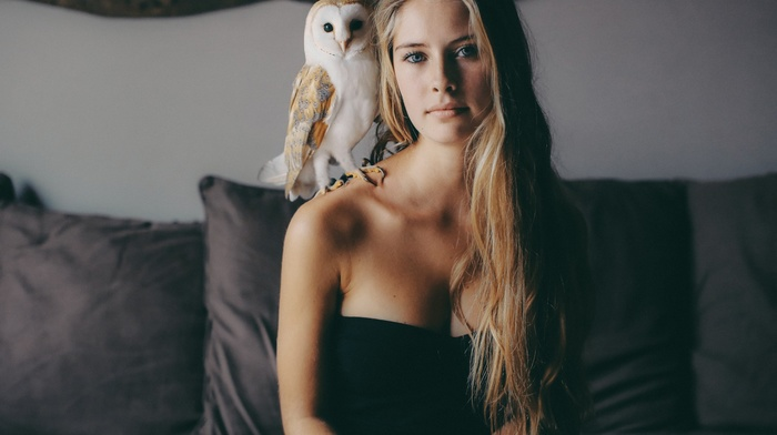 blonde, bare shoulders, Camille Rochette, owl, animals, blue eyes, birds, face, girl, couch, long hair