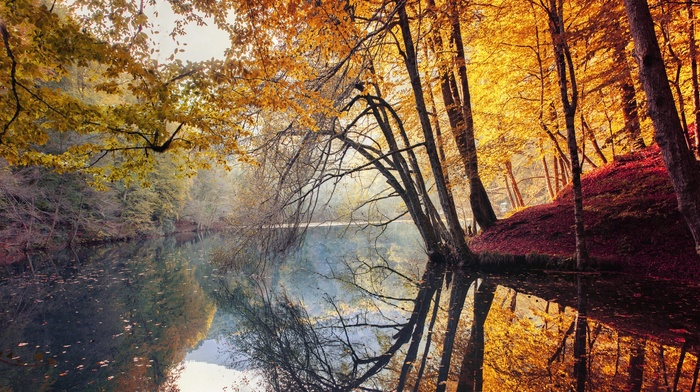 fall, landscape, water, trees, Turkey, colorful, leaves, mist, red, yellow, nature, river, forest, reflection