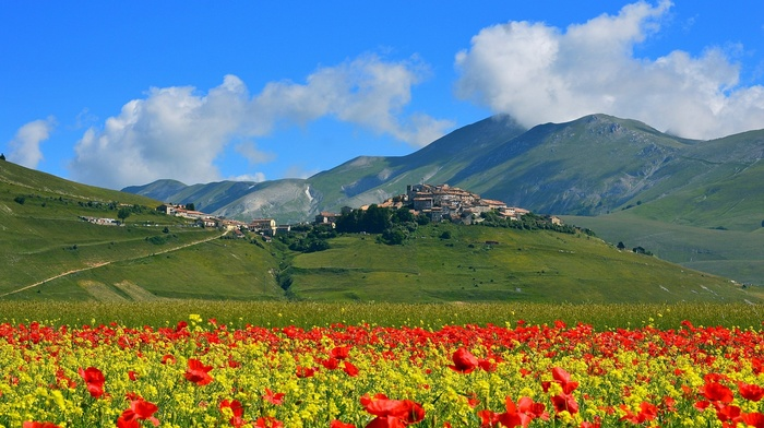 castle, village, ancient, trees, architecture, Italy, hill, mountain, poppies, flowers, landscape, clouds, field, path, nature, grass, summer, old building