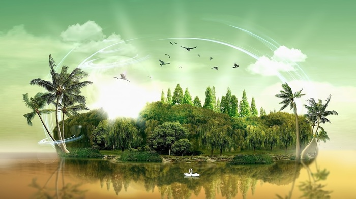 landscape, island, light trails, grass, forest, birds, reflection, water, swans, trees, nature, digital art, clouds, palm trees
