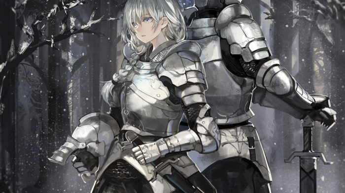 helmet, armor, snow, sword, forest